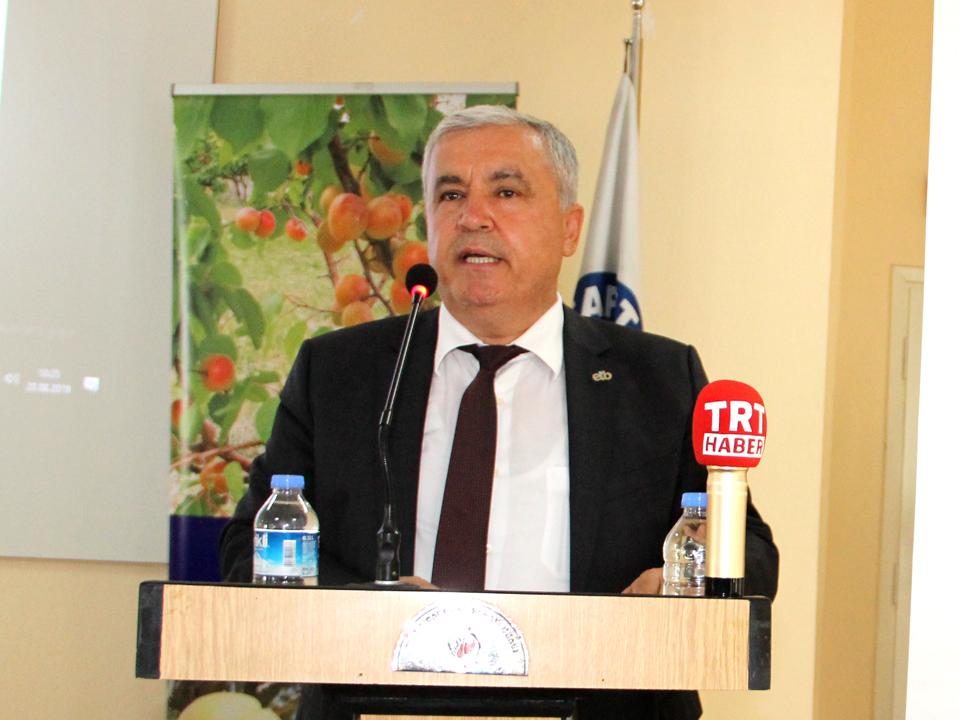 Ege Zeytin ve Zeytinyağı İhracatçıları Birliği Başkanı Er, Mut Zeytini İlaçsız